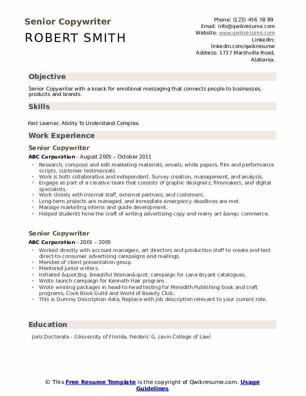 Senior Copywriter Resume example