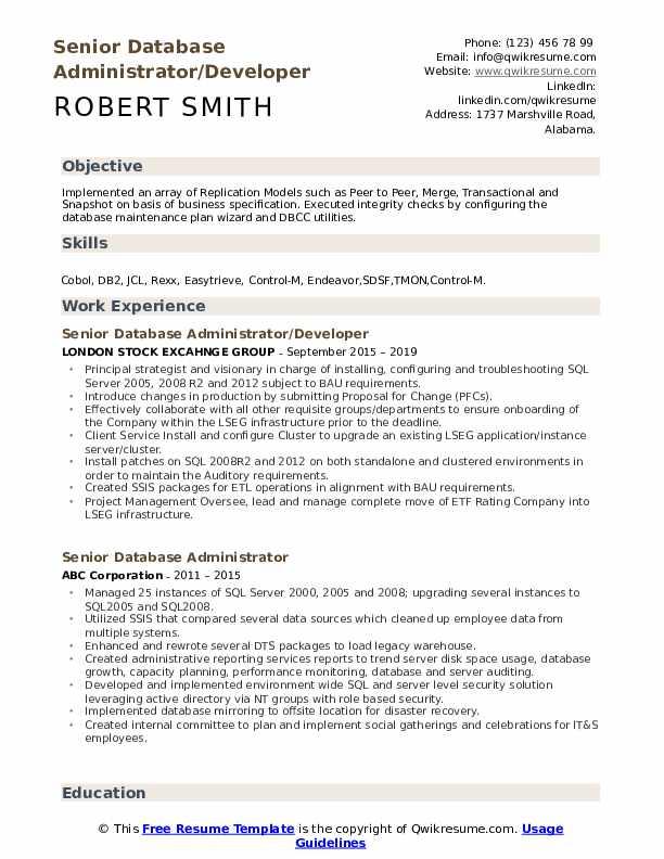 Senior Database Administrator/Developer Resume Format