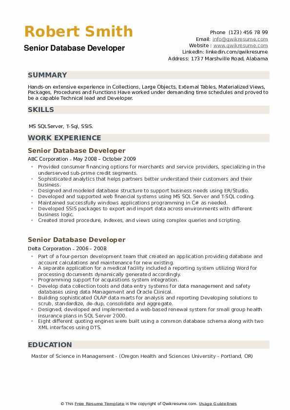 Senior Database Developer Resume example