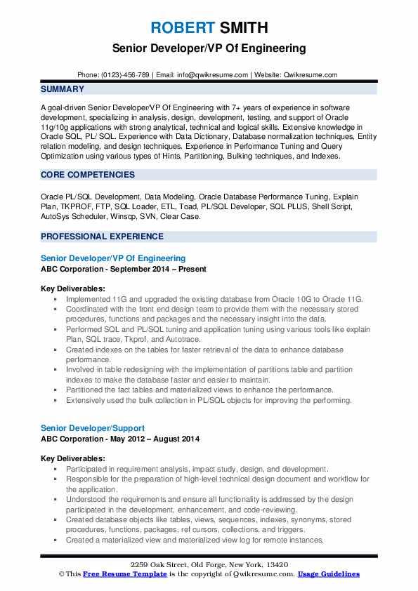 Senior Developer/VP Of Engineering Resume Format