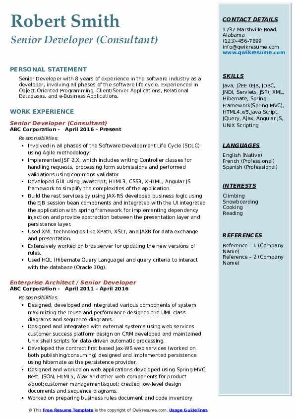 Senior Developer (Consultant) Resume Model