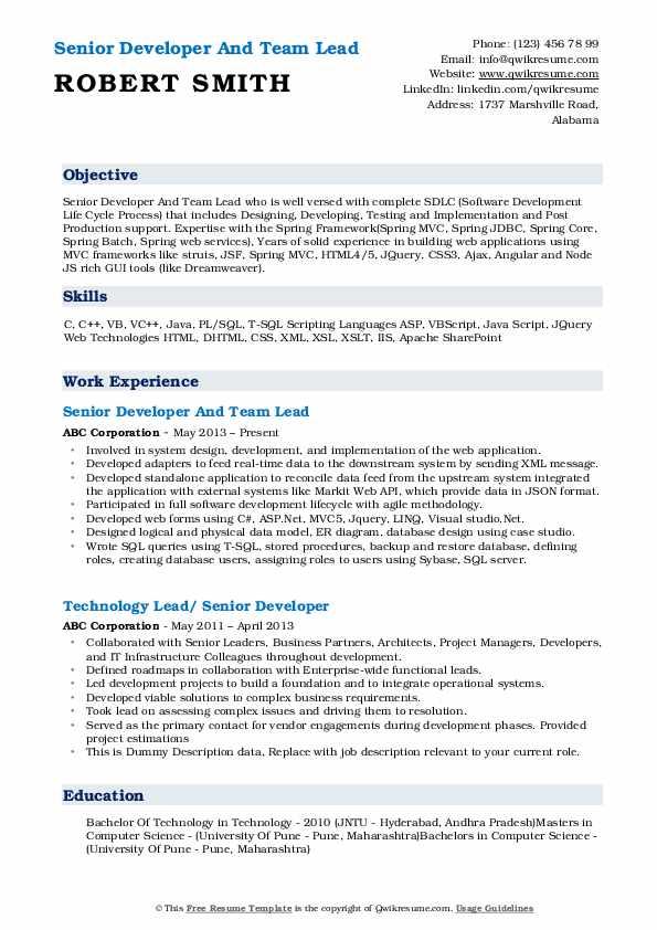 Senior Developer And Team Lead Resume Format