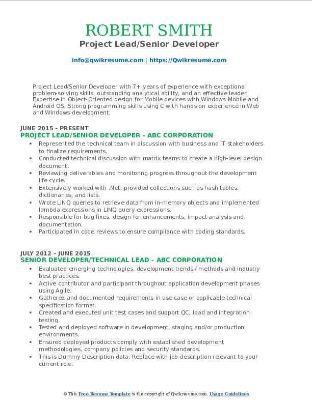 Project Lead/Senior Developer Resume Sample