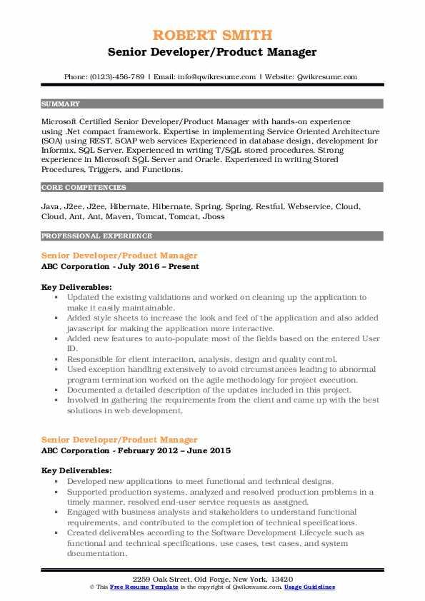 Senior Developer/Product Manager Resume Format