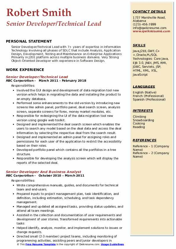 Senior Developer/Technical Lead Resume Sample