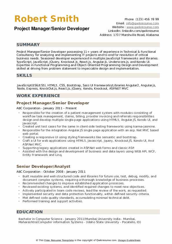 Senior Developer Resume example