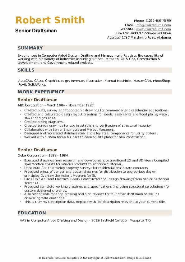 Senior Draftsman Resume example