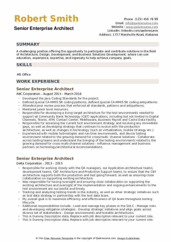 Senior Enterprise Architect Resume example