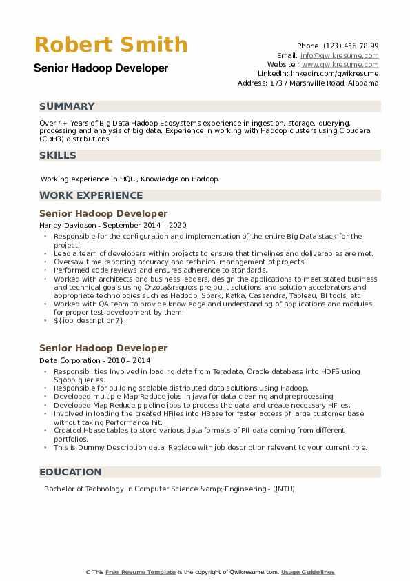 Senior Hadoop Developer Resume example