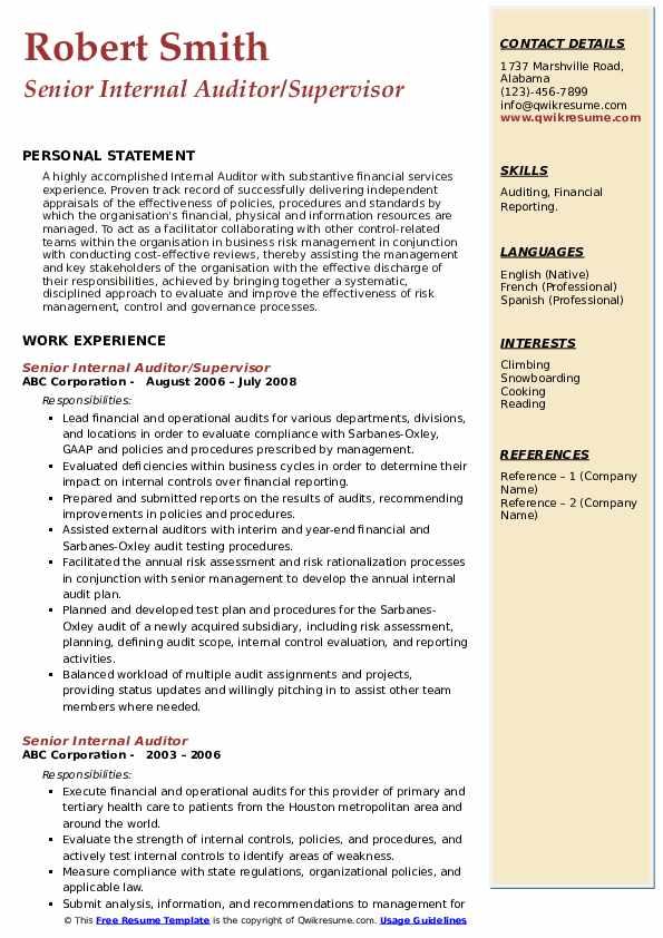 senior internal auditor resume samples