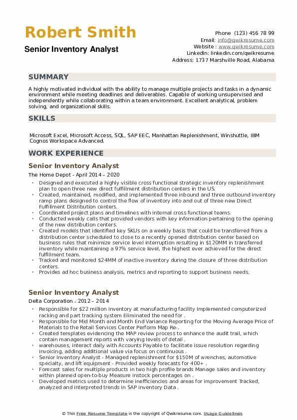 Senior Inventory Analyst Resume example