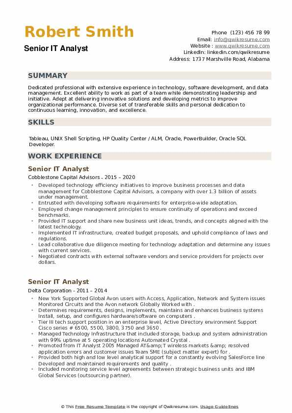 Senior IT Analyst Resume example