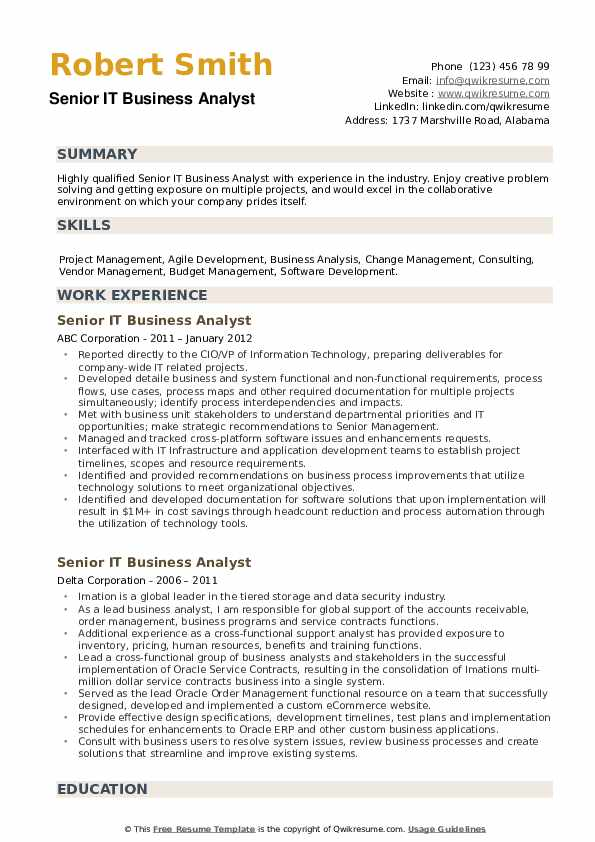 Senior IT Business Analyst Resume example