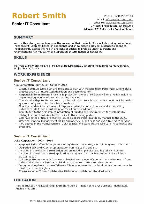 Senior IT Consultant Resume example
