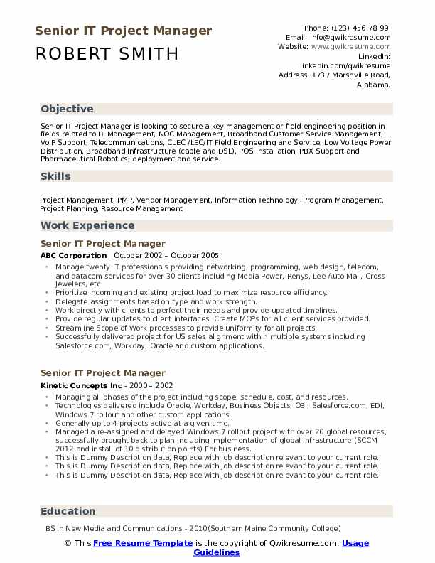 Senior IT Project Manager Resume example