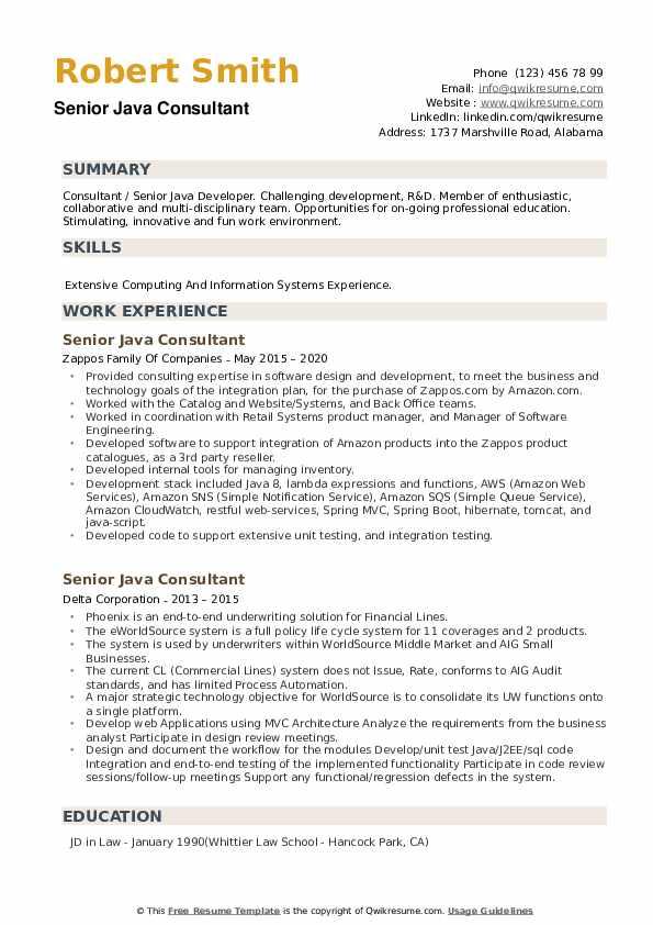 Senior Java Consultant Resume example