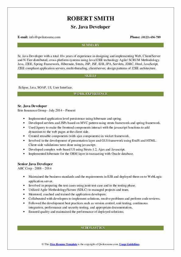 Sr. Java Developer Resume Model