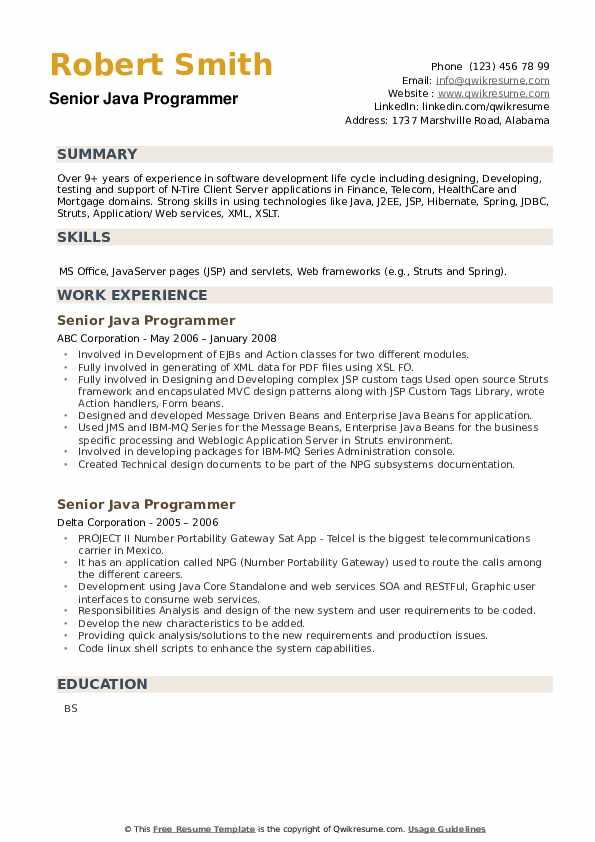 Senior Java Programmer Resume example