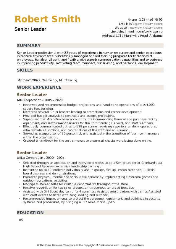 Senior Leader Resume example