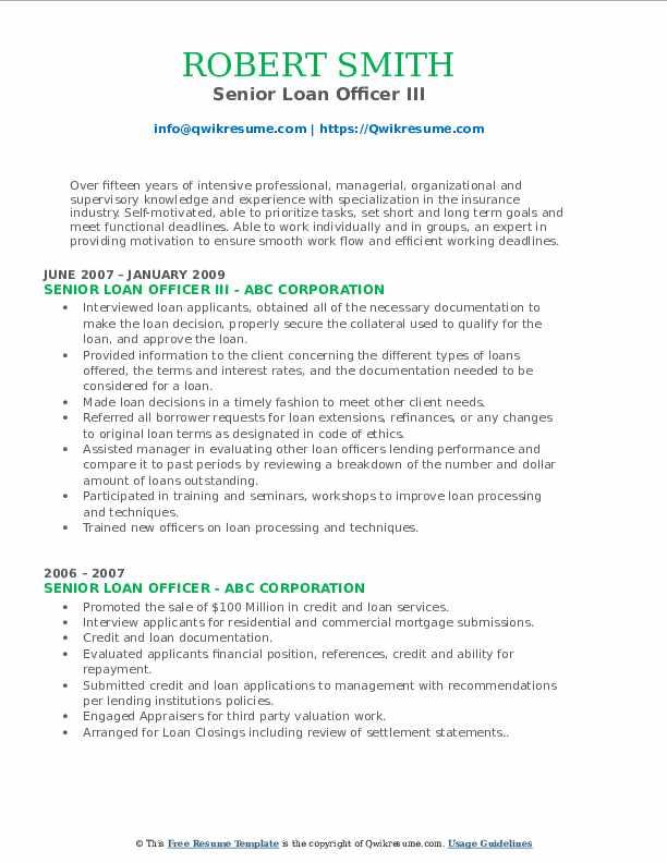 Senior Loan Officer III Resume Example