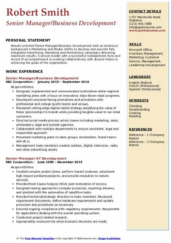 Senior Manager/Business Development Resume Example