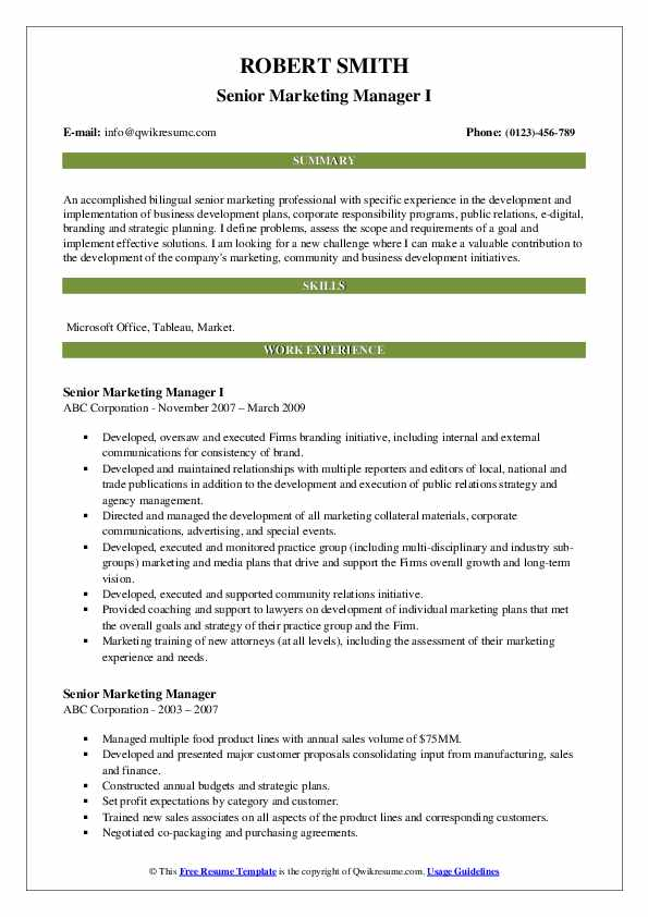 Senior Marketing Manager I Resume Template