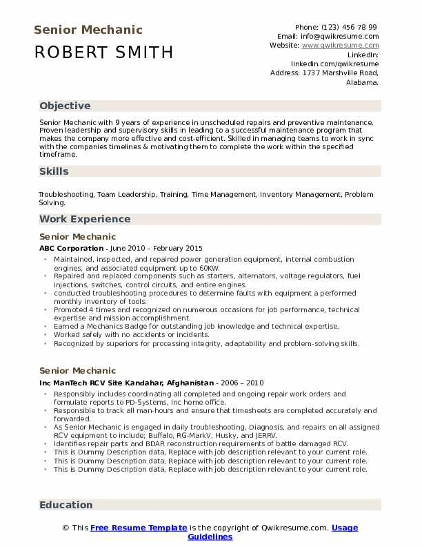 Senior Mechanic Resume example