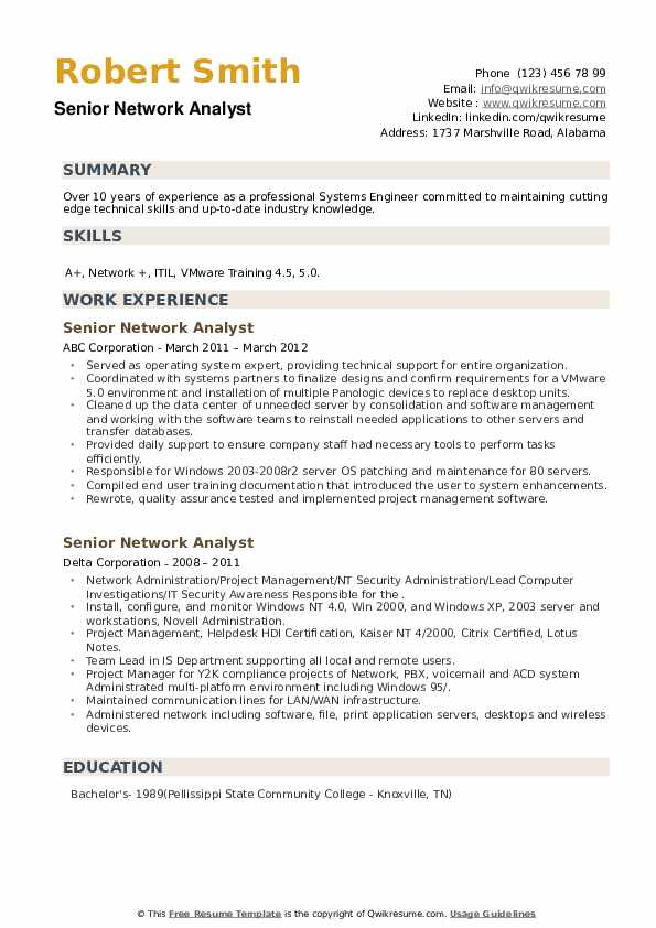Senior Network Analyst Resume example