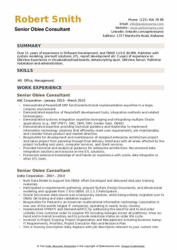 Senior Obiee Consultant Resume example