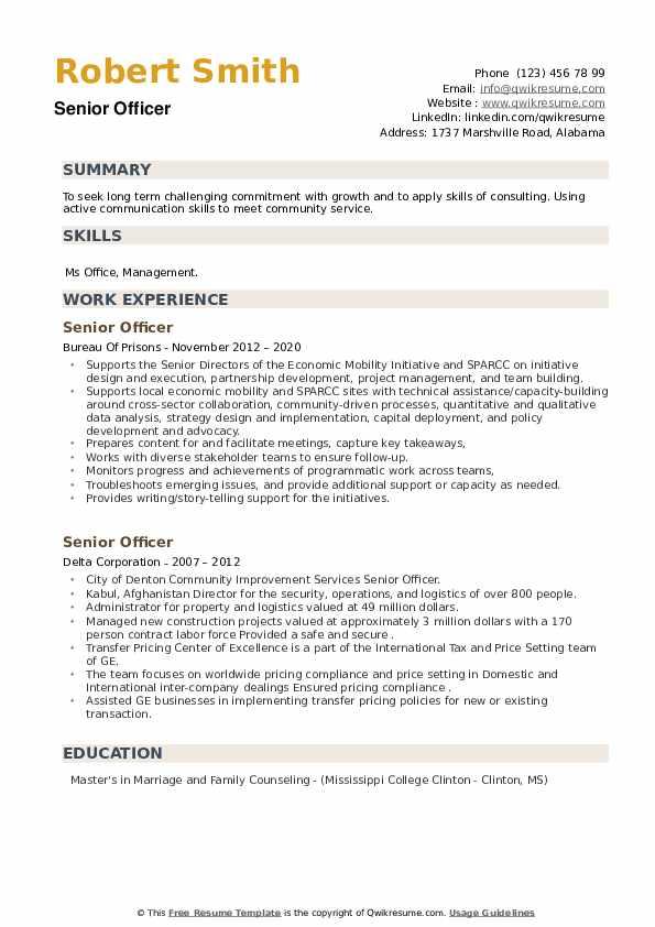 Senior Officer Resume example