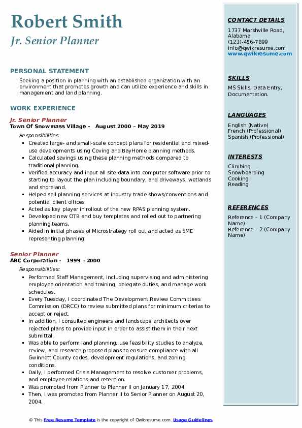Senior Planner Resume example