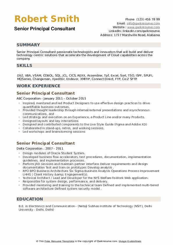 Senior Principal Consultant Resume example