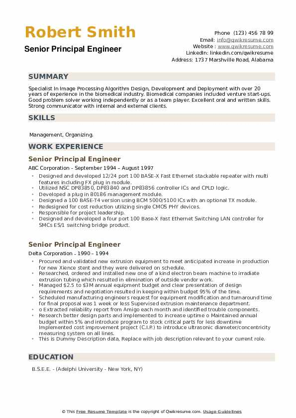 Senior Principal Engineer Resume example