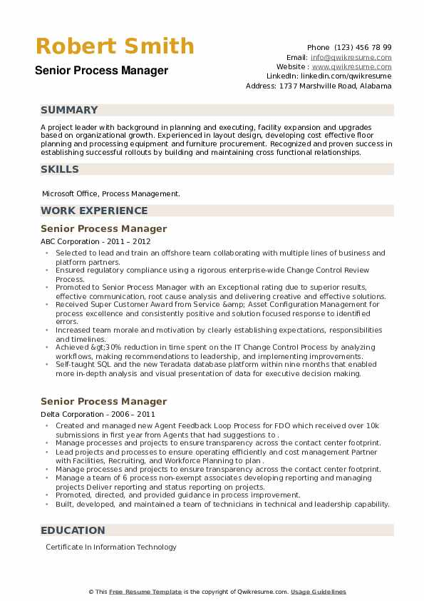 Senior Process Manager Resume example