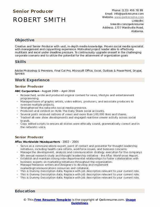 Senior Producer Resume example