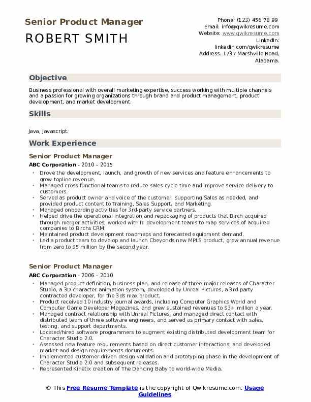 Senior Product Manager Resume Model