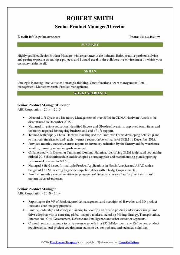 Senior Product Manager/Director Resume Example