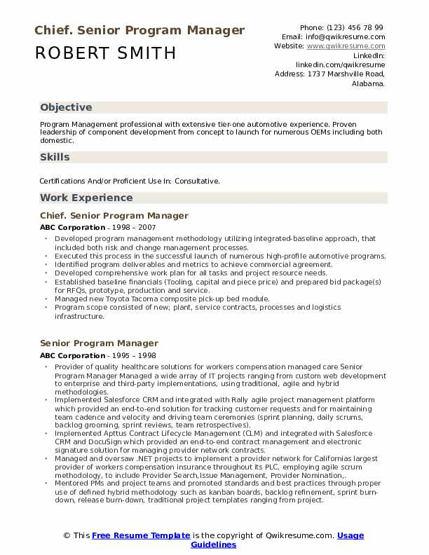 Chief. Senior Program Manager Resume Format
