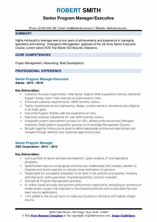Senior Program Manager/Executive Resume Template