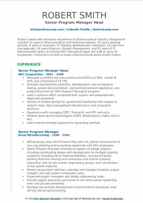 Senior Program Manager Head Resume Format