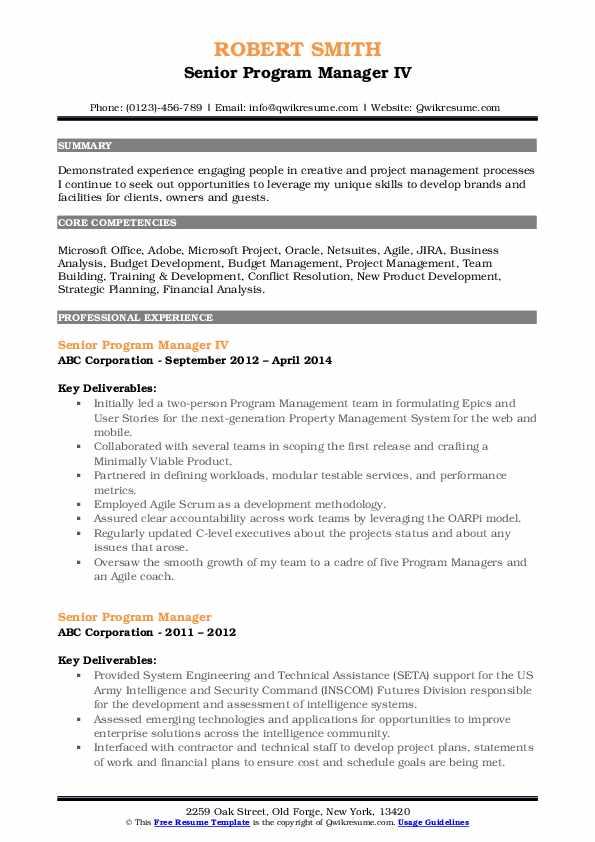 Senior Program Manager IV Resume Sample