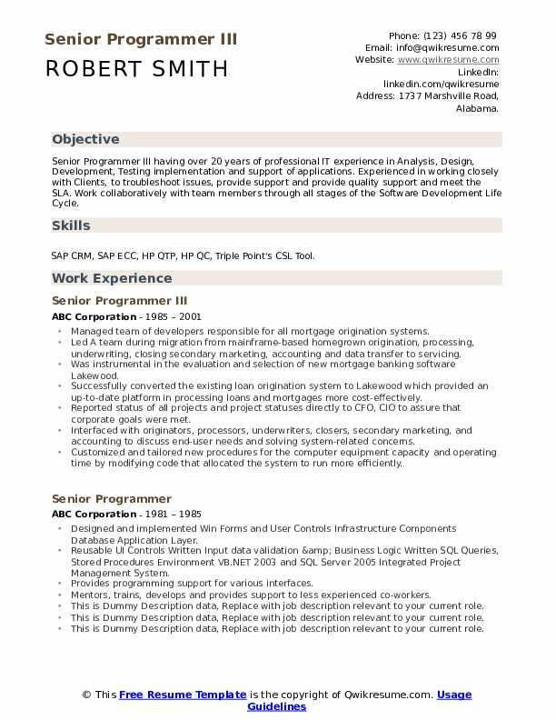 objective in resume for programmer
