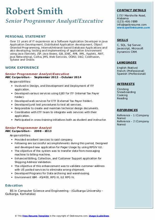 Senior Programmer Analyst/Executive Resume Format