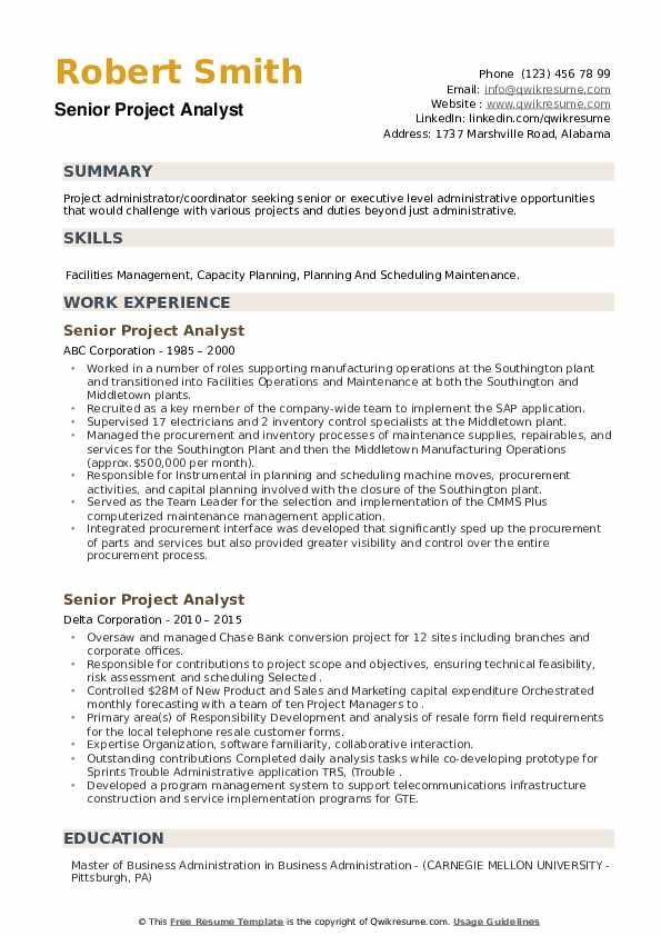 Senior Project Analyst Resume example
