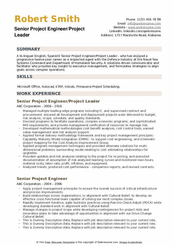Senior Project Engineer/Project Leader Resume Example