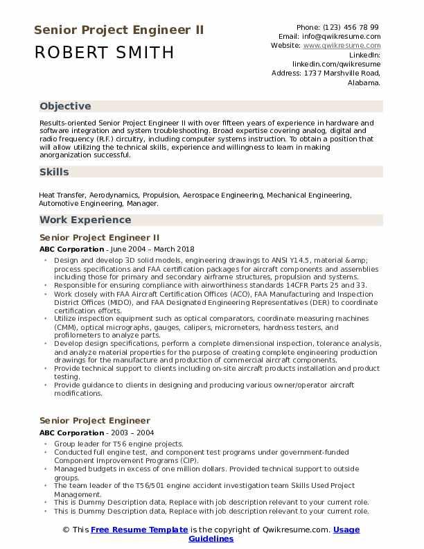 Senior Project Engineer Resume example