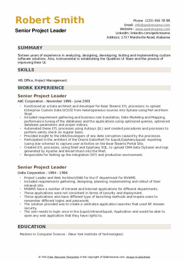 Senior Project Leader Resume example