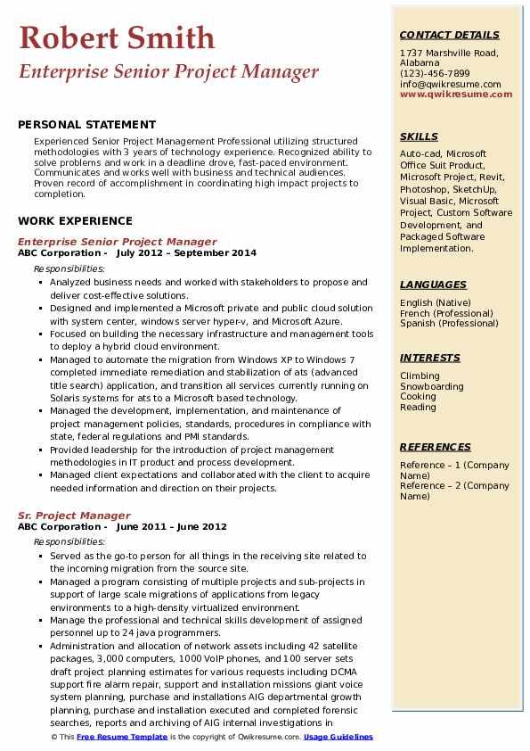 Enterprise Senior Project Manager Resume Model