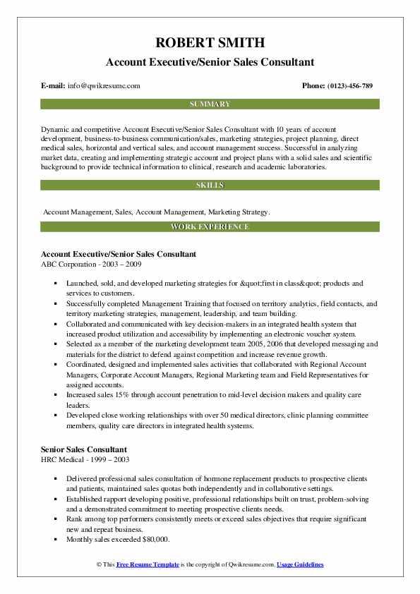 Account Executive/Senior Sales Consultant Resume Example