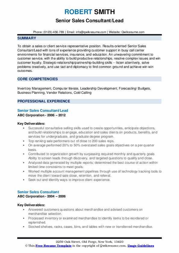 Senior Sales Consultant/Lead Resume Model